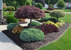 Personalize The Garden to Your Liking